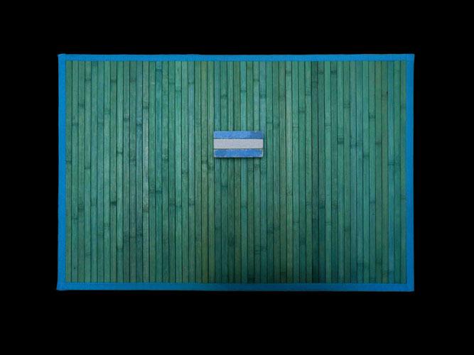 Bandera argentina, serie, objetos ensamblados, 61 x 92 x 9 cm, 2011.