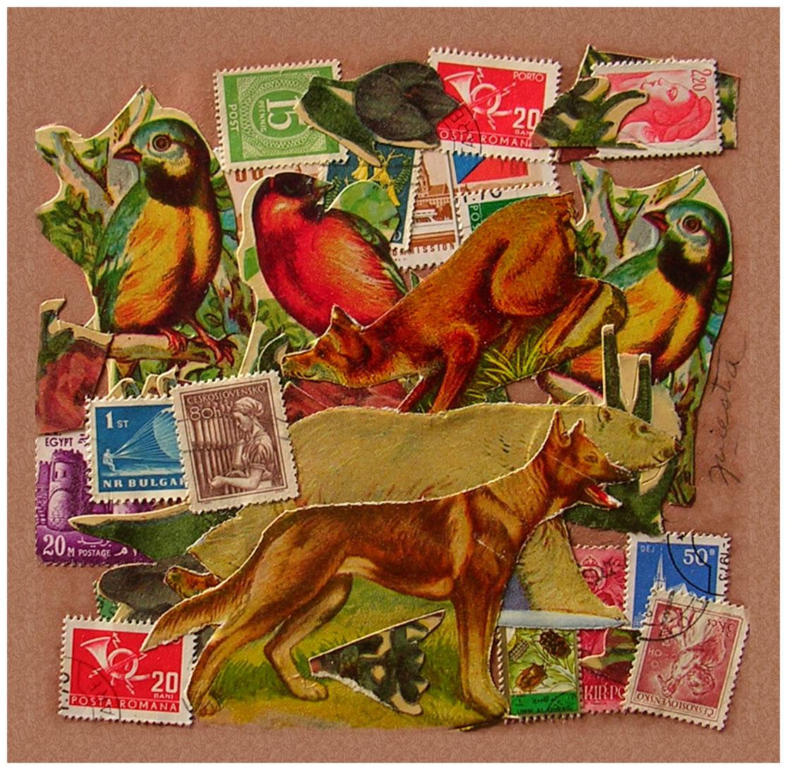 Lobo,  papel collage, 15 cm x 15 cm, 1999