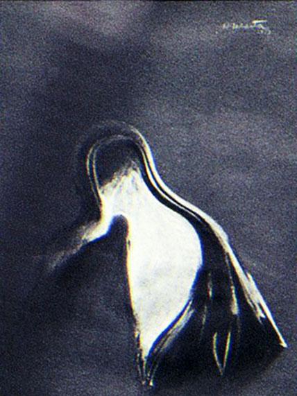 Dibujo Pastel 1970