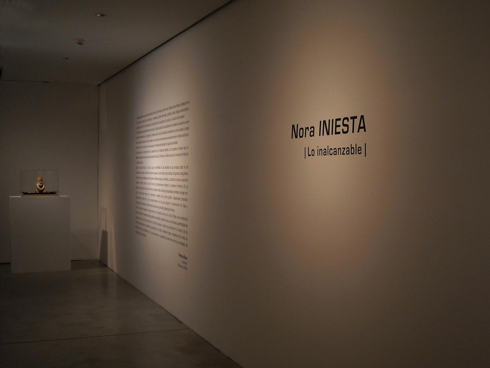 Lo Inalcanzable / Museo Provincial de Bellas Artes Emilio Caraffa, Córdoba, 2009