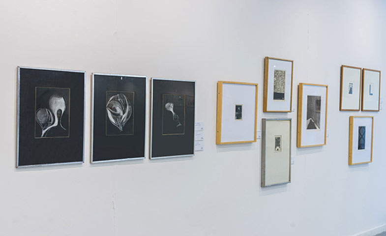 El DISCURSO CLARO, (en tiempo y forma), La Línea Piensa, Centro Cultural Borges, Buenos Aires, 2015